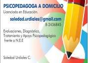 Psicopedagoga licenciada en educacion a domicilio huechuraba
