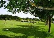 fracción cementerio parque san pedro