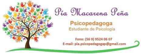 Psicopedagoga a domicilio, Peñalolén, La Reina, Ñuñoa, Las Conces