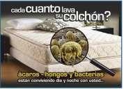 Colchones, limpieza, sanitizacion, desinfeccion sistema a vapor 223133523